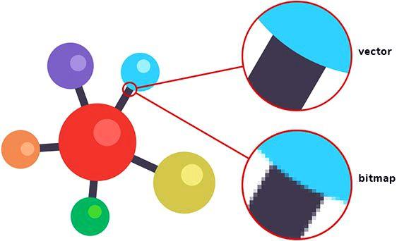 Vector-imagen-vs-bitmat-imagen-comparacion